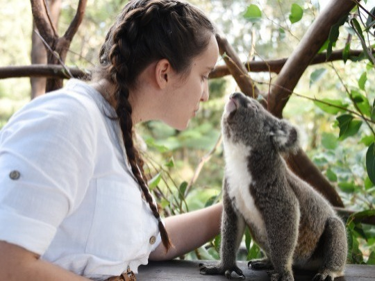 The Australian Reptile Park's Adult Keeper for a Day program aims at providing an intense and very hands on experience for adults (aged 18+ years) and involves as many aspects of zookeeping that we can pack into one day!