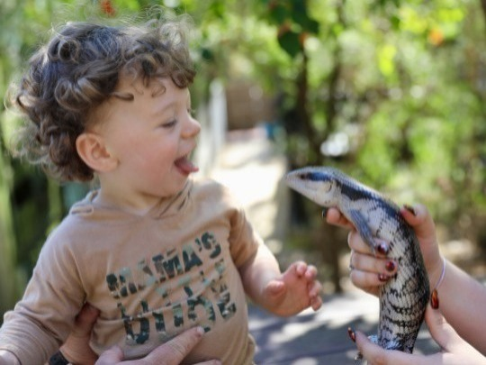 Discover the Wonders of Wildlife!  A great experience for you and your child – see them discover the magic of animals!
